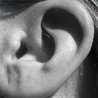 Relative Pitch Ear Training